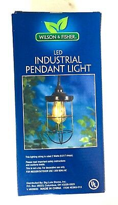 "LED Industrial Pendant Light 8"" High Lead Wire 5 Ft Indoor or Outdoor New"