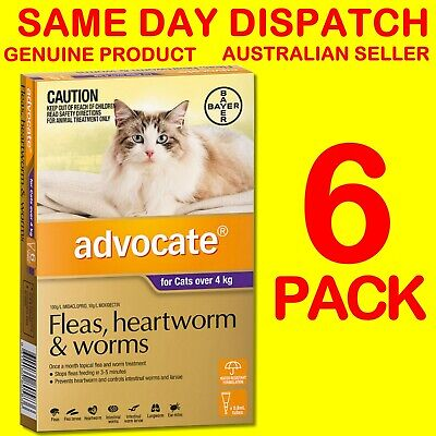 Advocate Flea & Worm Control for Cats over 4kg - 6 Pack