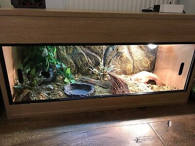 3 ft Reptile Vivarium Tank and accessories
