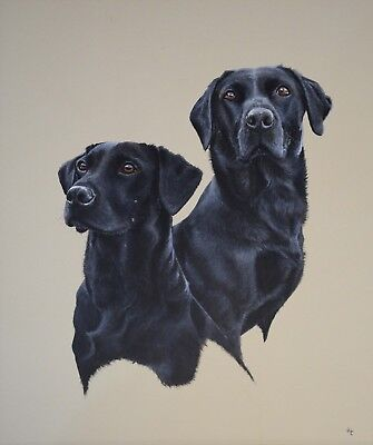 John Clarke ORIGINAL Very large painting signed and framed Labradors