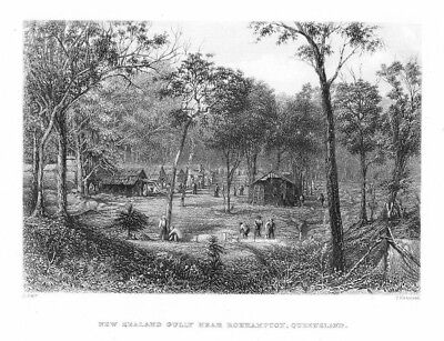 1870 - Roehampton Queensland New Zealand Gully Australia engraving Stahlstich