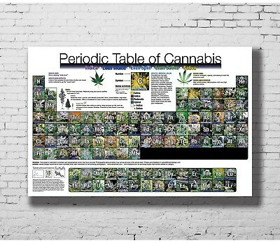 24x36 14x21 40 Poster Periodic_Table_of_Cannabis Art Hot P-4376