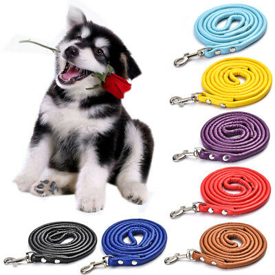 Pet Dog Nylon Rope Training Leash Slip Lead Strap Adjustabl Traction Collar 1.2m