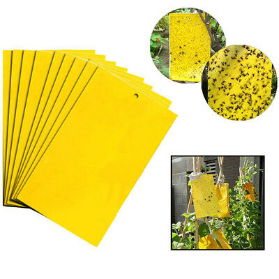 Yellow Sticky Glue paper Insect Trap Catcher Killer Fly Aphids Wasp 5~100pcs Lot