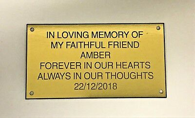 PERSONALISED ENGRAVED BENCH PET MEMORIAL PLAQUE ANY PET CAT,DOG,Rabbit 10X6CM