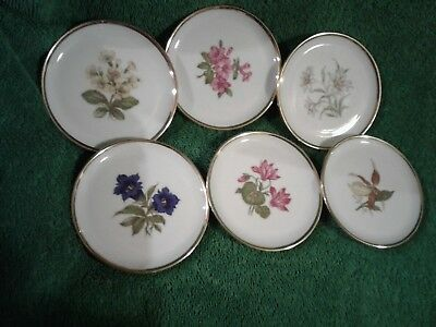 Vintage Set Of 6 Schumann Germany #41  Floral Butter Pats
