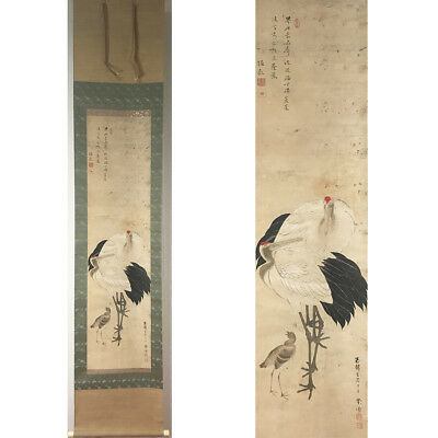 HANGING SCROLL JAPANESE PAINTING JAPAN CRANE ANTIQUE ART VINTAGE PICTURE 388i