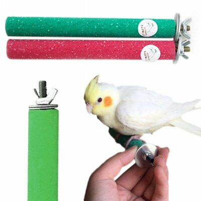 Pet Bird Stand Chew Toys Parrot Paw Grinding Colorful Perches Funny Budgie YU