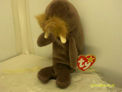 f0800625f47 MWMT Ty BEANIE BABY JOLLY THE WALRUS VERY RARE 1996 w  HANG TAG STYLE ERROR
