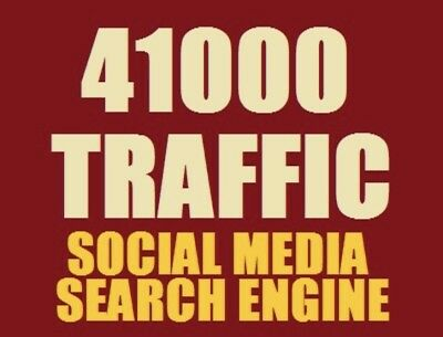 41,000 Unique REAL Website Traffic For Your Website (6,000-7,000 Daily Traffic)