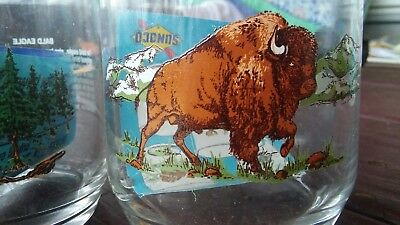 Sunoco Collectable Vintage Rare OOP Bison Animal Drinking Glass Sun Oil Promo