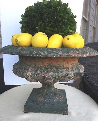 Antique French Cast Iron Planter Pot Urn
