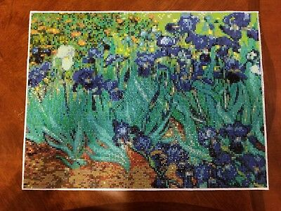 Full Drill Square Completed 5D Diamond Painting Van Gogh Irises Wall Art Mosaic