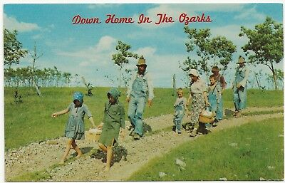 """""""Down Home in the Ozarks"""" Missouri 1960's Chrome Card by Panorama Publishers"""