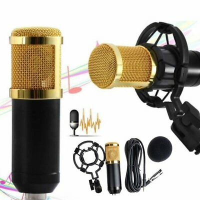 Professional Audio Condenser Microphone Mic Studio Sound Recording Shock Mount