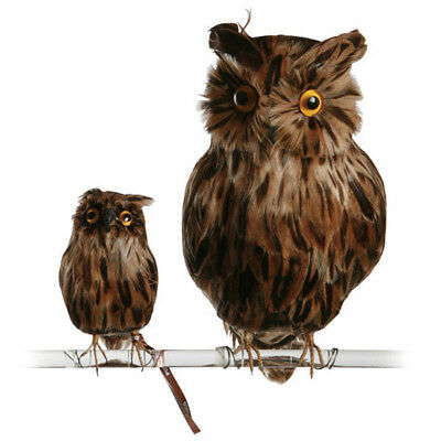 Brown Owl Fabulous Artificial Bird Realistic Fake Owl Taxidermy (Small)