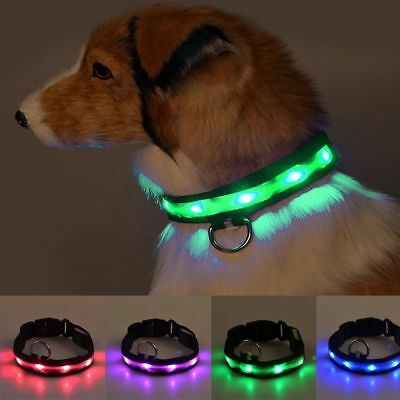 Glowing Adjustable Pet Luminous Necklace LED Dog Collar Neck Chain Strap Buckle
