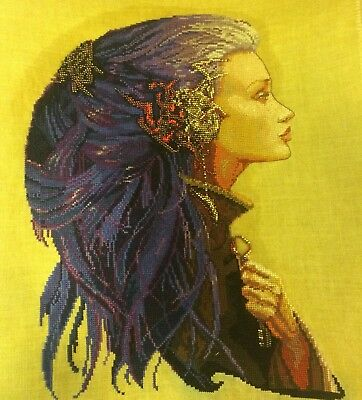 Completed Finished Cross Stitch Avatar Clef Nimue Exlusive embroidery Dimensions