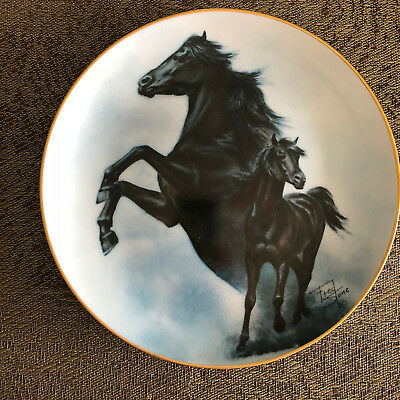 Black Stallion Collector Plate by Fred Stone