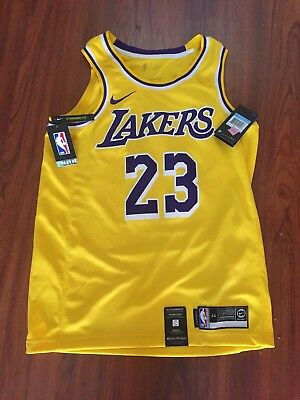 fc8a90900 Nike Los Angeles Lakers Lebron James Jersey NBA Basketball AA7099-741 Size  S-XXL