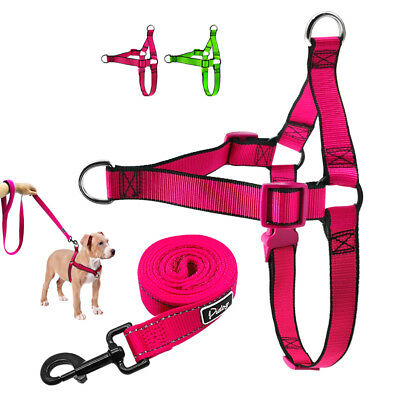 Large Dog Front Leading Harness No Pull Dog Harness Leash for Rottweiler Pitbull