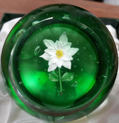 Boxed Forget-me-not Handmade Glass Paperweight By Sylshire