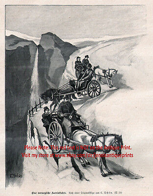 Horse Norwegian Fjord Carriage Horses on Steep Road, Large 1880s Antique Print