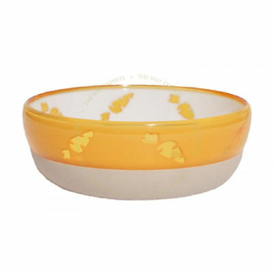 Translucent Carrot Bowl (Pack of 6)