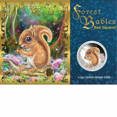 2013 Red Squirrel 1/2oz Silver Proof Coin Forest Babies