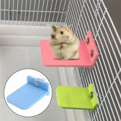 Small Squirrel Molar Toy Multi-color Hamster Jumping Platform Springboard Toy AT