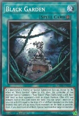 3x Black Garden - LED4-EN032 - Common 1st Edition yugioh konami original 3x