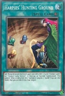 3x Harpies' Hunting Ground - LED4-EN009 - Common 1st yugioh konami original 3x