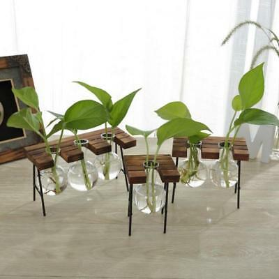 Rustic Wooden Stool Stand Tabletop Glass Plant Flower Vase Home Decoration