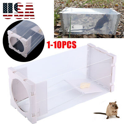 10*Humane Rat Trap Cage Animal Pest Rodent Mice Mouse Bait Catch Capture Control