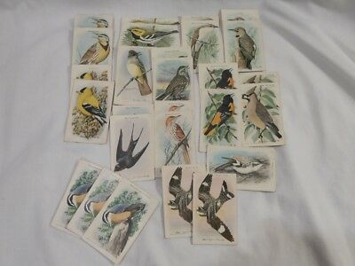 Vintage Arm & Hammer Useful Birds Of America 10Th Series Lot Of 27
