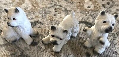 Westie West Highland Terrier Dog Ceramic Figurines Set Of 3 Playful Pups SO CUTE