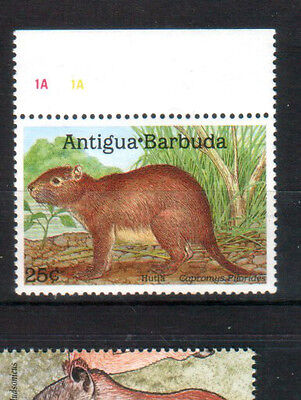 Antigua und Barbuda  1989 Animal Hutia