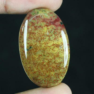 36ct Natural Best Grade Blood Stone Oval Cabochon from Africa GX38
