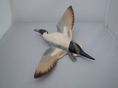 Wade / Wadeheath Pintail - Peter Scott - Wildfowl - Excellent Condition