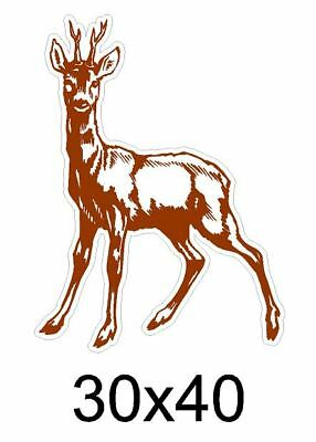 Sticker Chasseur Autocollant Chasse Cerf Chevreuil N6 Eur 20