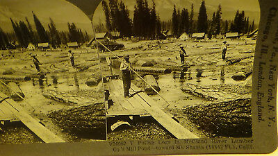 Photo Stereoview Mt Shasta Ca Loggers Factory Mill Buildings Card