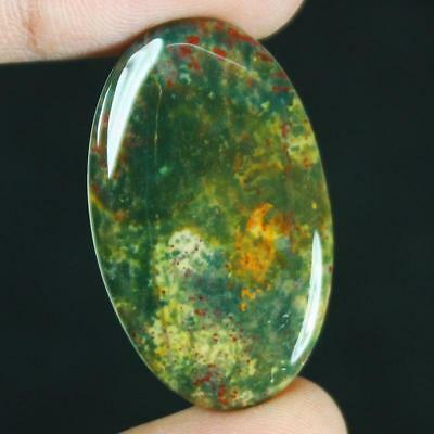 24ct Natural Best Grade Blood Stone Oval Cabochon from Africa GX16