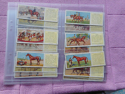 Full Set Trade Cards - Typhoo Tea - The Horse