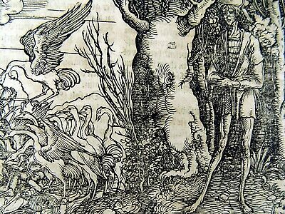1532 Hans Weiditz - Master Woodcut - The Weakness of the Human Body