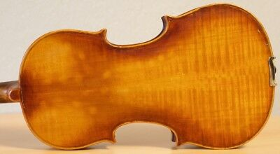 old violin 4/4 geige viola cello fiddle label DEGANI GIULIO di EUGENIO