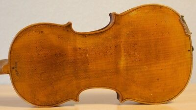 old violin 4/4 geige viola cello fiddle label DAVID TECCHLER