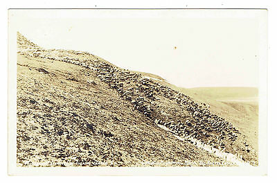 WWII era Arctic Circle Caribou Migrating RPPC Photo Approved by Theatre Censor