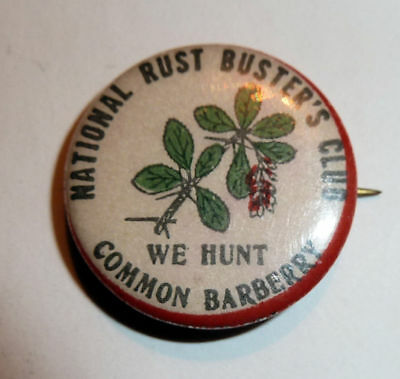 Unusual PINBACK Horticulturial National RUST BUSTERS CLUB Barberry Hunters 1950s