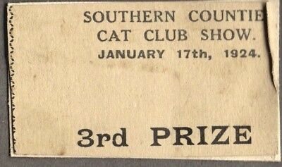 Vintage Litho '24 Cat Kitten London England Old Advertising Club Show Prize Card