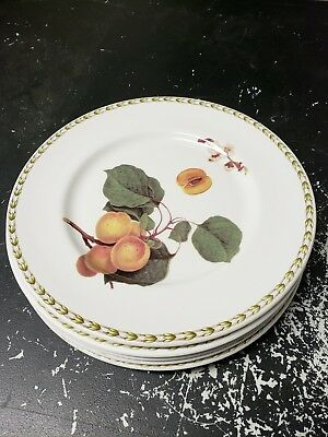 5 Queen's Fine China The Royal Horticultural Society Hookers Fruit Bread Plates